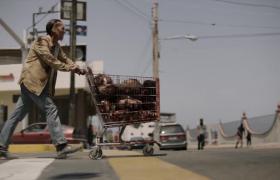 Fear The Walking Dead - 3. Sezon - 15. Bölüm